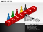 Chess Pieces PowerPoint Presentation Slides