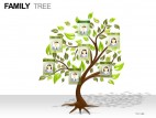 Family Tree PowerPoint Presentation Slides