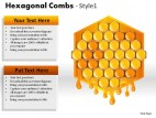 Hexagonal Combs Style 1 PowerPoint Presentation Slides