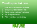 Nature Environment PowerPoint Templates And PowerPoint Backgrounds 0411