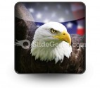 American Eagle01 PowerPoint Icon S