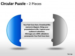 Circular Puzzle 2 And 3 Pieces PowerPoint Presentation Slides