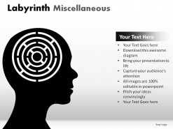Labyrinth Misc PowerPoint Presentation Slides