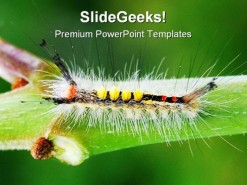 Catapillar Animals PowerPoint Template 0910