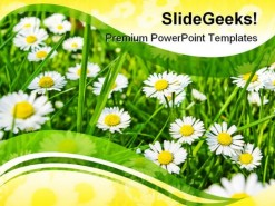 Daisies01 Beauty PowerPoint Template 1110