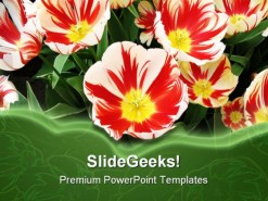 Flowers Beauty PowerPoint Template 1110