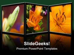 Flowers Nature PowerPoint Template 0610