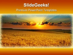 Golden Field Nature PowerPoint Template 0810