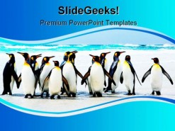 Kings Of The Beach Animals PowerPoint Template 1110