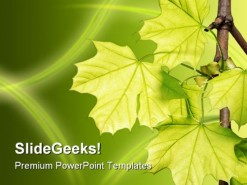 Leaves Green Nature PowerPoint Template 1110