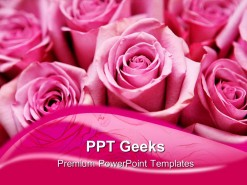 Pink Roses Beauty PowerPoint Templates And PowerPoint Backgrounds 0411