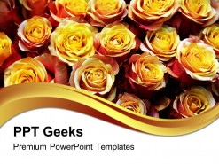 Roses01 Beauty PowerPoint Templates And PowerPoint Backgrounds 0411