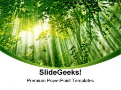Sunlight01 Nature PowerPoint Template 1110