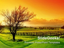 Vineyard Nature PowerPoint Background And Template 1210