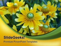 Yellow Daisies Nature PowerPoint Template 0610