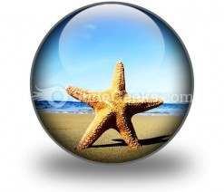 Beach Starfish PowerPoint Icon C