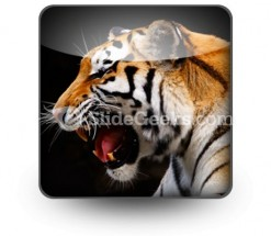 Tiger PowerPoint Icon S