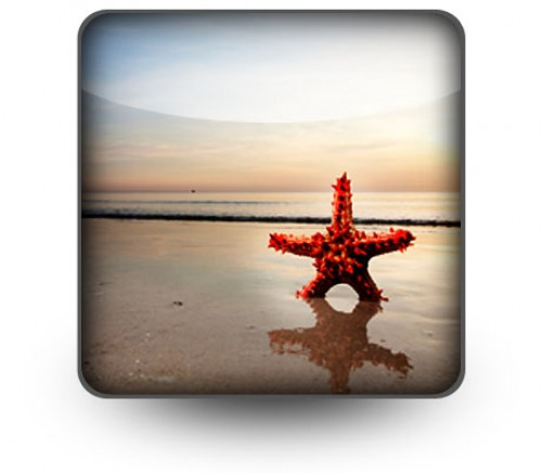 Beach Starfish PowerPoint Design Slides 10