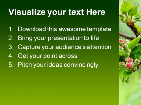 Blossom Beauty Nature PowerPoint Template 0810