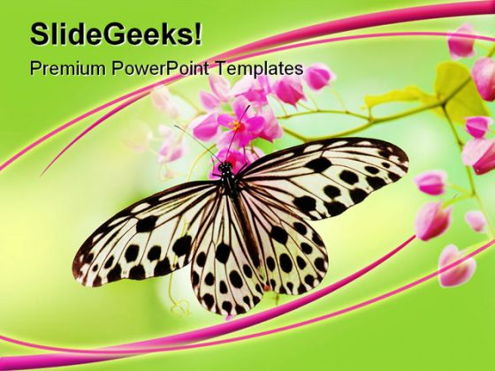 butterfly animals powerpoint template 0910, Modern powerpoint