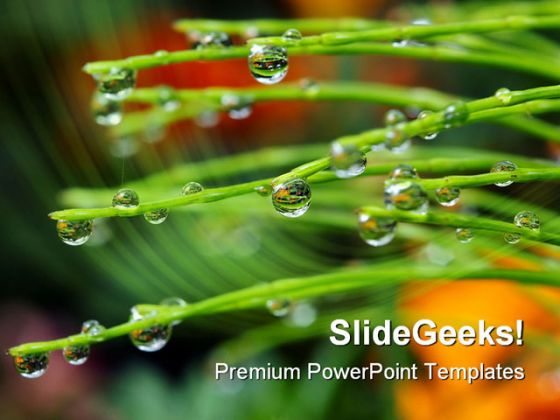 Dew Drops Nature PowerPoint Template 1110