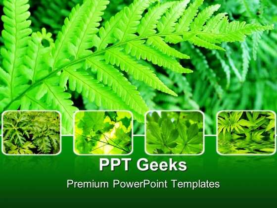 green fern bushes nature powerpoint templates and powerpoint, Modern powerpoint