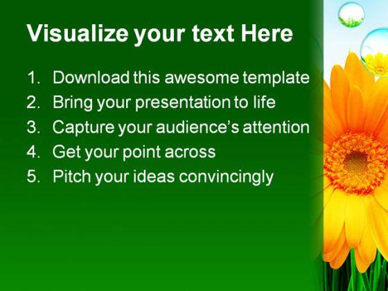sunflower_nature_powerpoint_template_1110_2.jpg