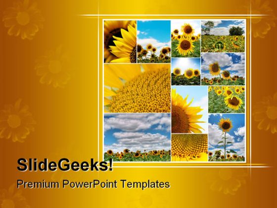 sunflowers collage nature powerpoint template 0810. Black Bedroom Furniture Sets. Home Design Ideas